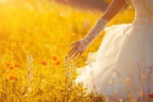 תמונה של כלה בשדה